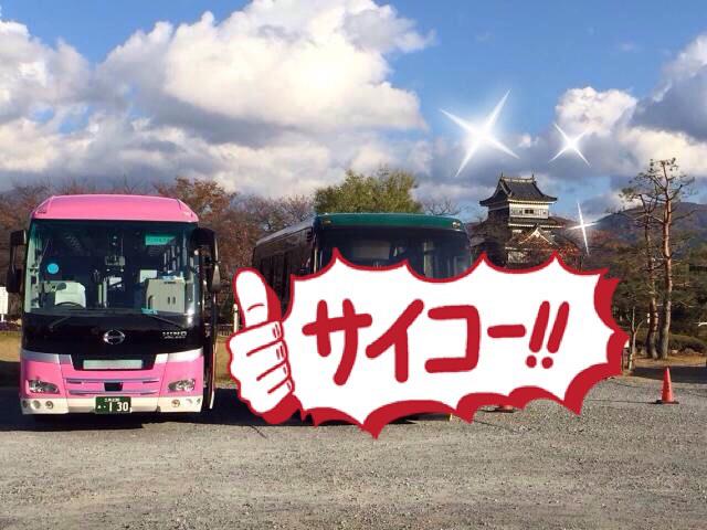 松本城とピンクバス